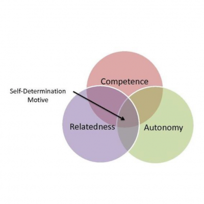 Motivation and Self-Determination as essential ingredients for Positive Mental Health