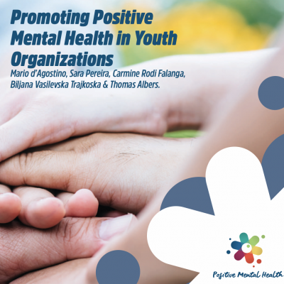 Manuals for youth workers and youth organisations available!